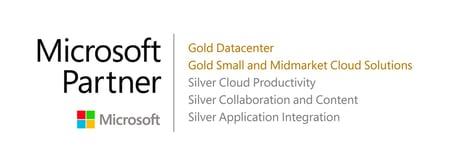 Microsoft Gold Partner Logo-1