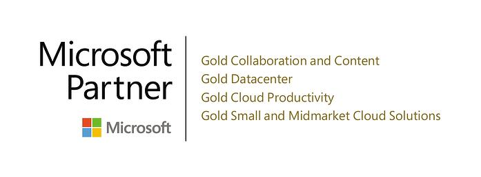 MS Gold Partner Competencies x4 JPEG